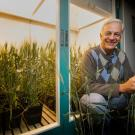 UC Davis Plant Sciences Professor, Jorge Dubcovsky is among 16 current UC Davis faculty named as among the top 1 percent in their fields for citations of scientific papers. Dubcovsky is a leading expert on wheat genetics. (UC Davis photo)